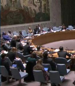 UNSC during debate